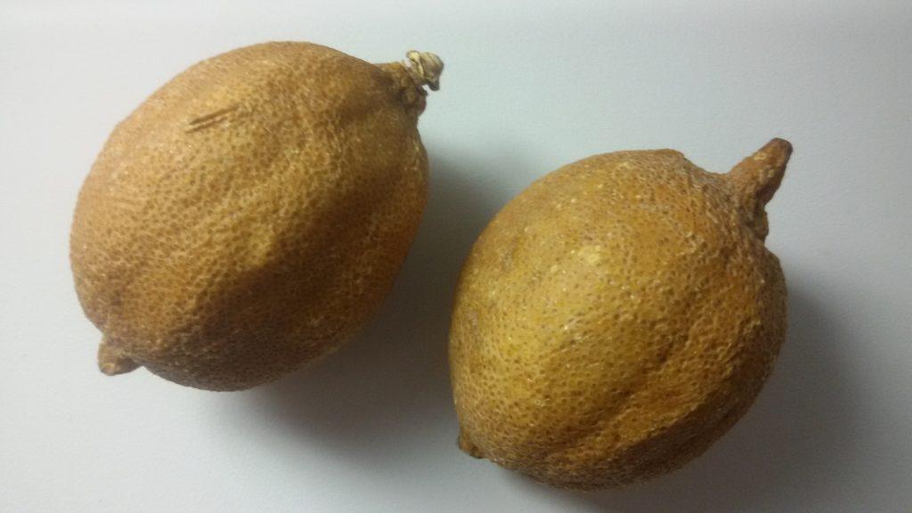 magnetiser un citron