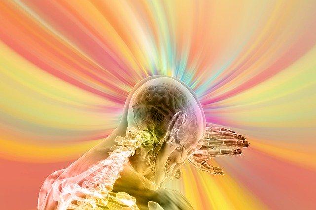 cerveau - intuition
