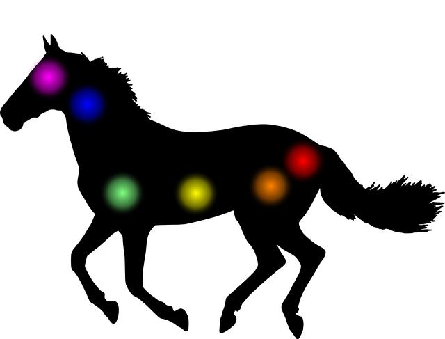 les chakras des chevaux