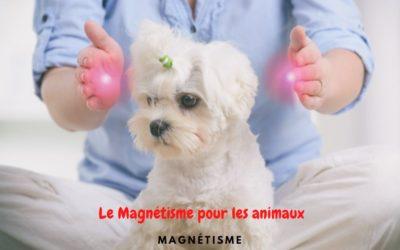 Le Magnétisme pour les animaux